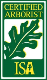 Ferrall's Tree Trimming & Removal - 3 certified arborists on staff